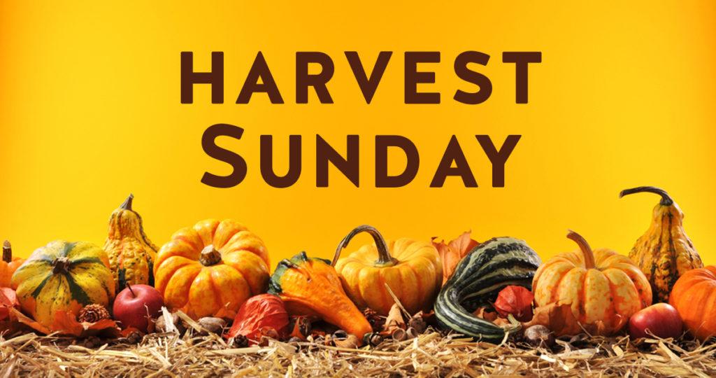 Image result for harvest sunday pics
